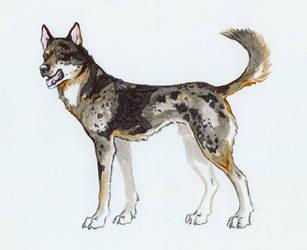 Jake for Jenn by Wolfsjal