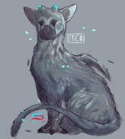Trico by CrazySuperior