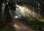 Corbett National Park003 by DebasishPhotos