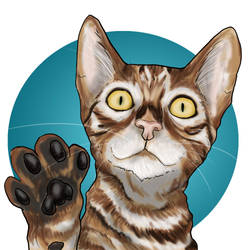 Frodo the Toyger Avatar - First Draft by Toyger