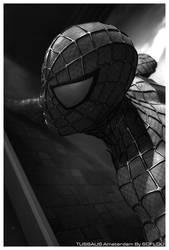 Spiderman by ofostier
