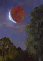 Lunar Eclipse by Vyter