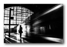 milano stazione centrale 2 by roa006
