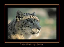 Uncia portrait by caracal