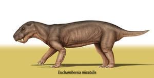 Euchambersia mirabilis by Theropsida