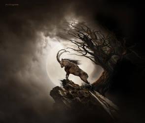 Aries by gotman68