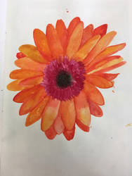 Flower:) by stormisnormal
