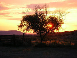 Sunset by itsayskeds