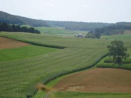 Farm Four by itsayskeds