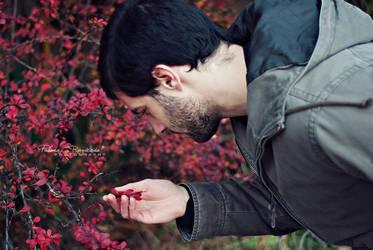 Fall by LoMiTa