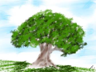 SKETCH A TREE by kulaptoy