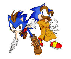 Hedgehog Bros. by LeniProduction