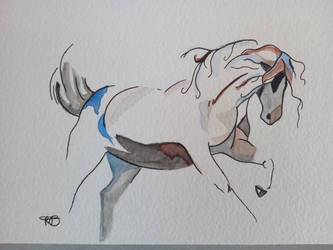 Horse's watercolor by misselo83