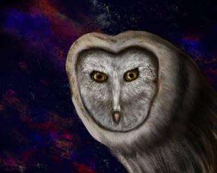 Owl Of My Dreams by CharlesADowdrick