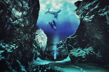 Beneath by tinacreeper