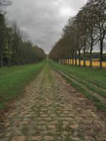 Long Path by simfonic