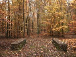 Autumn Bridge II by simfonic