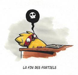 Fin des Partiels by Scarnor