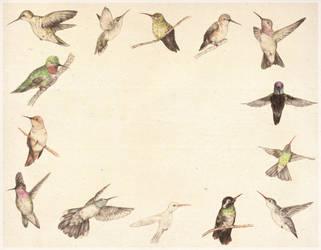 Birdies by TCShelton