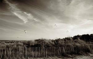 Hang Gliders by yonderboi