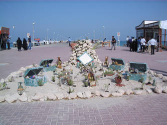 Haftsin in beach by quillet