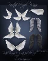 Angel Wings by moonchild-lj-stock