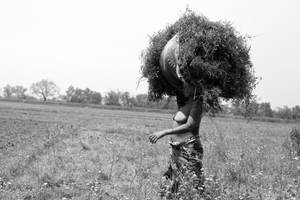 field woman. by SpellboundMisfits