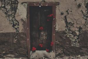 Roses for destruction by SpellboundMisfits