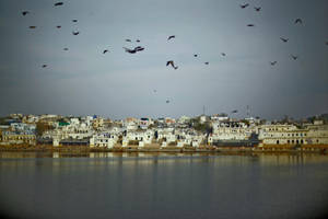 Pushkar Lake by SpellboundMisfits