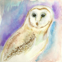 Barn Owl by aunjuli
