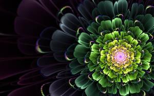 Last Flower by Ganjalvi