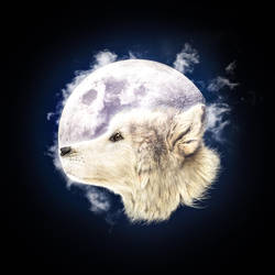 Wolf Moon by Ametafor91