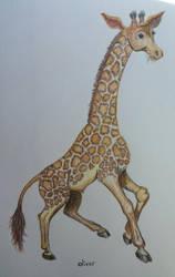 Giraffe by ladylithia