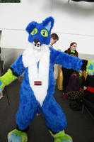 Straylight Border Collie Full Fursuit by StraylightRevelation