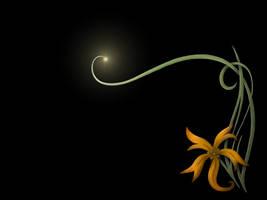 Lightflower WP by steelraven