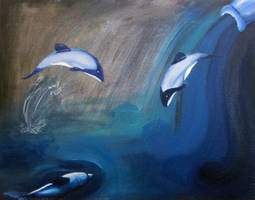 Hector's Dolphin by Azealand