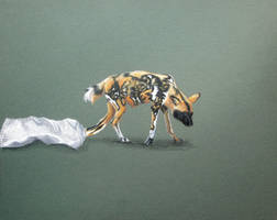African Painted Dog by Azealand