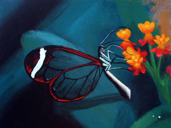 Glasswing Butterfly by Azealand