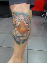 Tiger by shear-atmos-fear