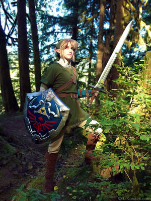Hero of Hyrule - Twilight Princess by LiKovacs