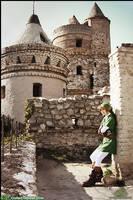 Link -Hyrule Castle by LiKovacs