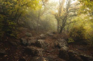Crimean forest by MariaBabintseva