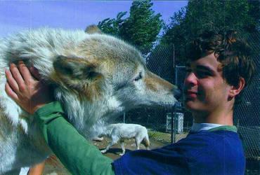 Wolf Love by WolfRepublic223