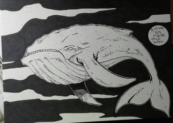 Inktober 2018 No.12 Whale by MikeES