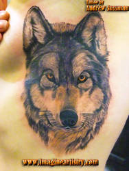 wolf's head by asussman