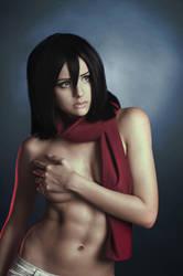 Mikasa by KasuzameYuu