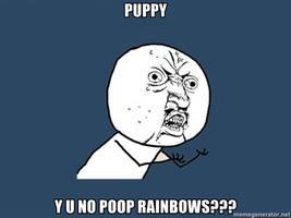 Y U NO: puppy by lulzypop