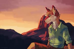 Juno-coyote by captyns