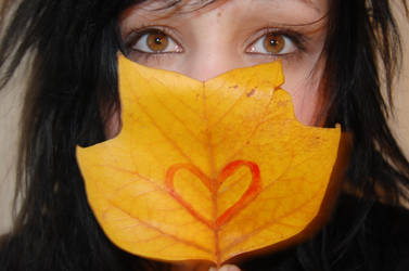 autumn by Luua