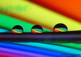 lovely colors by lindahabiba